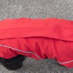 Hunde Winterjacken in Rot
