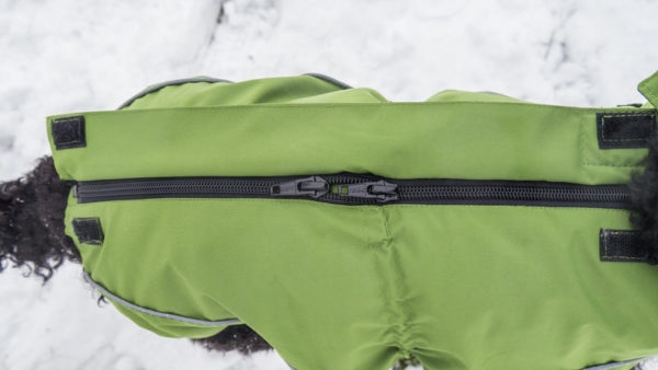 Dog's rain jacket / all-year jacket in green